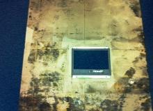 Contaminated Sub Floor